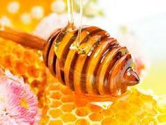 Мёд при демодекозе