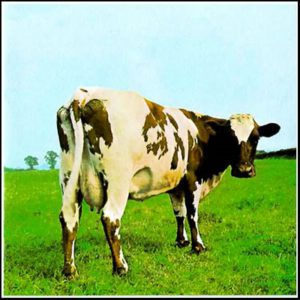 Демодекоз у коров (КРС)
